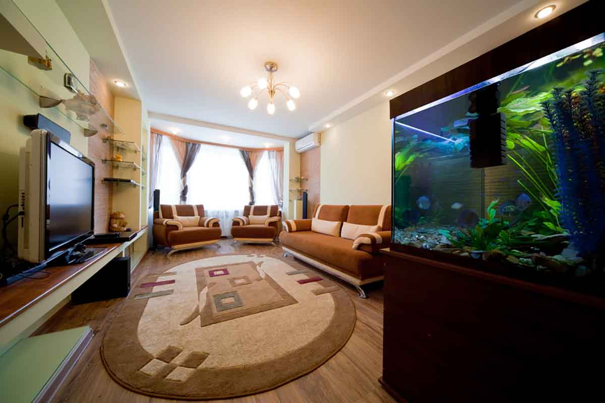 Fish aquarium in bhopal - 7 Ways To Incorporate Water Element In Your Home