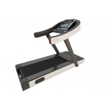 Robust Treadmill